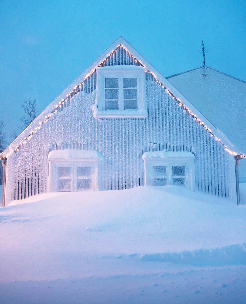 koti islannissa länsivuonot