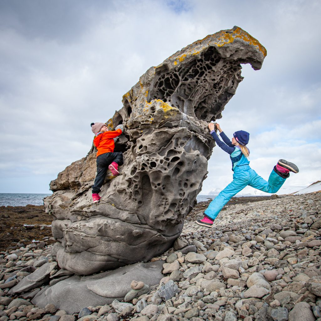 päiväretki Islannin Länsivuonoilla