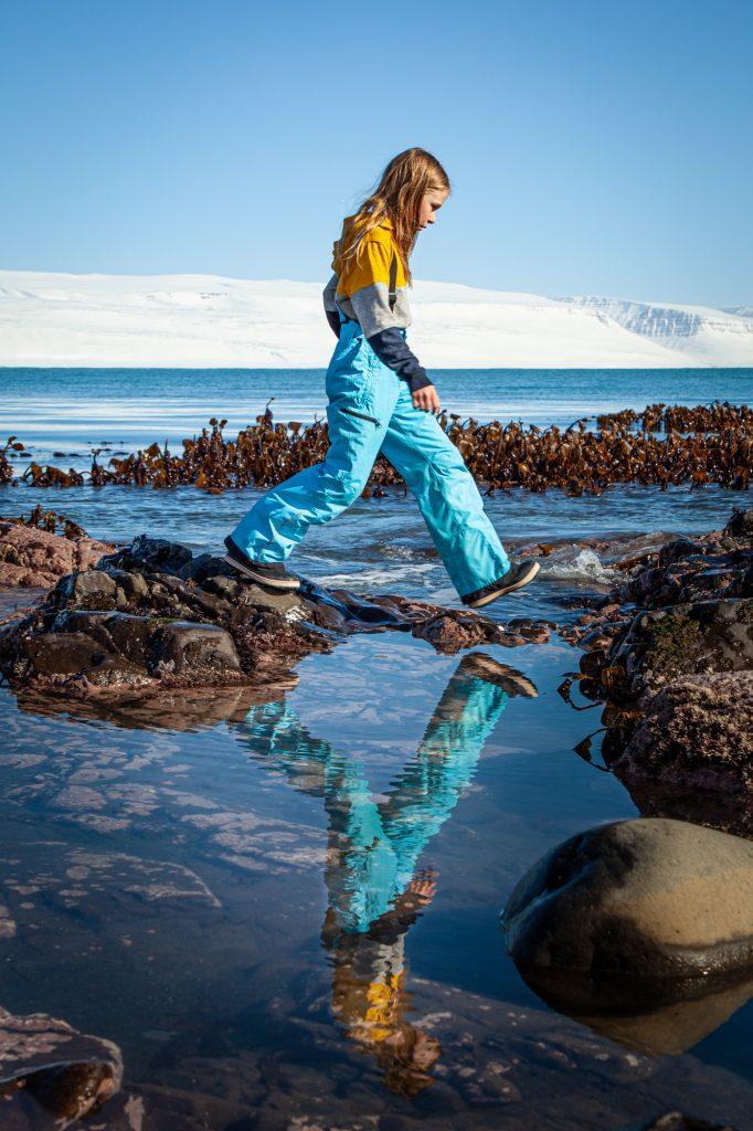 Islannin Länsivuonot päiväretki