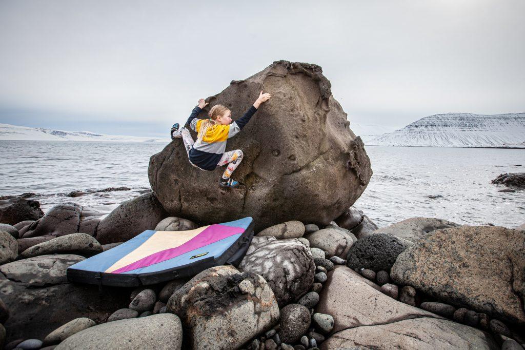 Länsivuonot päiväretket Islanti