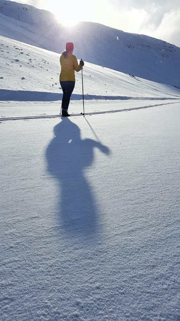isafjördur hiihtäminen päiväretki länsivuonoilla