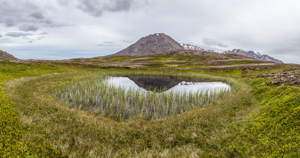 islanti erämaa